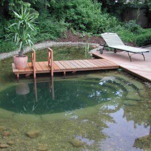 Пруд в качестве бассейна